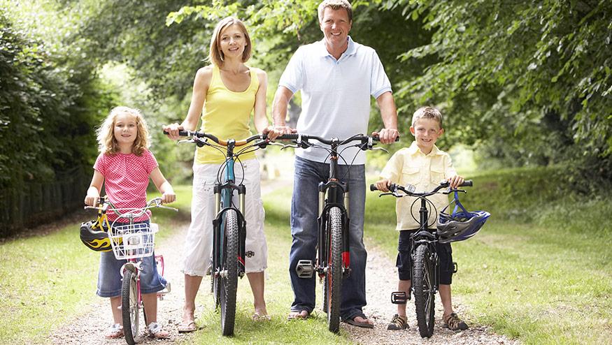 Cykelrea på nätet